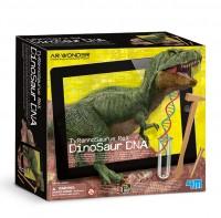 Ανακάλυψε το DNA των δεινόσαυρων και φερτούς ξανά στη ζωή !
